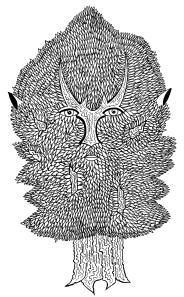 homme-arbre